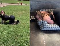 'Pega a bola, Jenna!': Americana ganha a vida se fazendo de cadela; veja vídeos