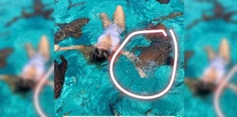 Blogueira é mordida ao tirar foto com tubarões nas Bahamas