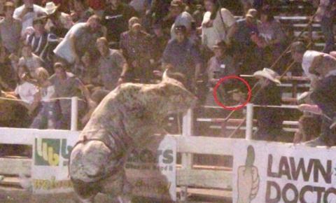 Touro avança sobre multidão que assistia a rodeio nos Estados Unidos; vídeo