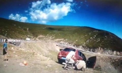 Família se distrai, e carro despenca de penhasco com passageiro na China; vídeo