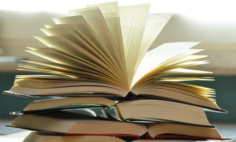 Escolha dos livros didáticos do PNLD começa hoje