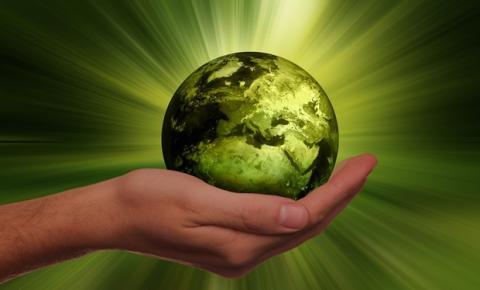 Qual a importância de ter uma empresa sustentável?