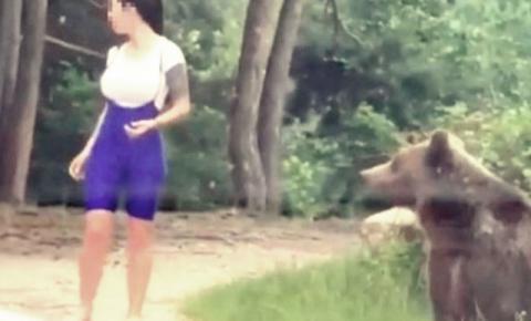 Mulher escapa de virar refeição de urso na Romênia; veja vídeo