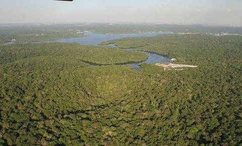 Amazônia perde 32 mi de campos de futebol de vegetação em 18 anos